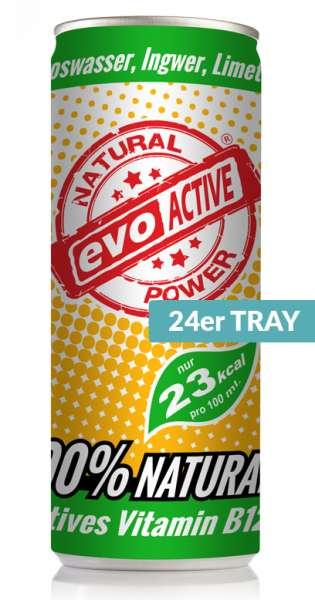 Evo Active Drink - Kokoswasser, Ingwer und Limette, 250ml - 24 Dosen