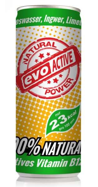 Evo Active Drink - Kokoswasser, Ingwer und Limette, 250ml - Dose